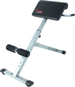 Sunny Health & Fitness 45-Degree Hyperextension Roman Chair