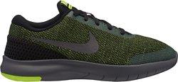 Nike Boys' Flex Experience Run 7 Running Shoes