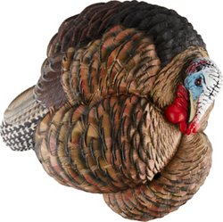 Avian-X Trophy Tom Taxidermy Turkey