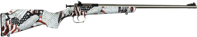 Crickett Youth Single Shot Synthetic .22 LR Bolt-Action Rifle - Rifles Rimfire at Academy Sports thumbnail