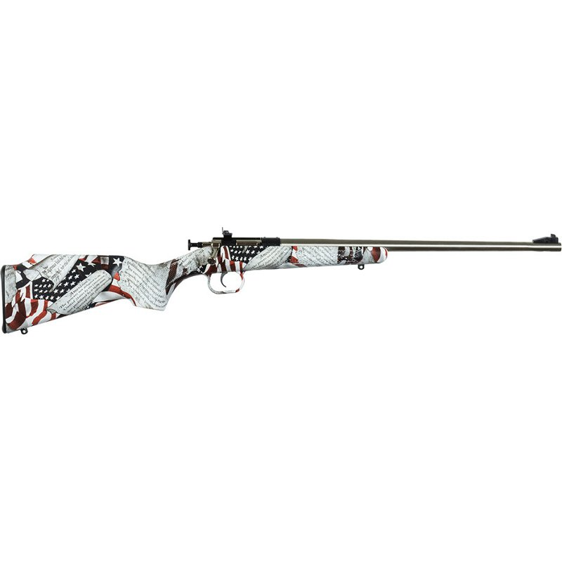 Crickett Youth Single Shot Synthetic .22 LR Bolt-Action Rifle - Rifles Rimfire at Academy Sports thumbnail
