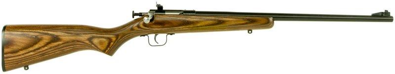 Crickett Youth Single Shot .22 LR Bolt-Action Rifle - Rimfire Rifles at Academy Sports thumbnail