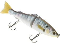 H2O XPRESS 5 in Glide Bait