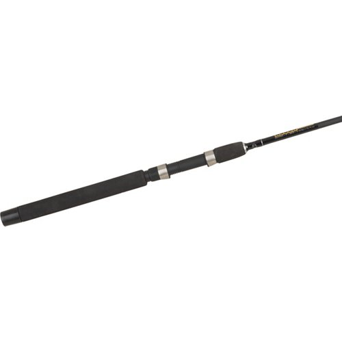 H2O XPRESS Roughneck Spinning Rod