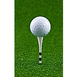 Players Gear 3-1/4 in Assorted No Resistance Lined Golf Tees 30-Pack