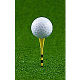 Players Gear 3-1/4 in No Resistance Mixed Lined Golf Tees 30-Pack