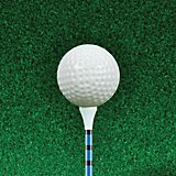 Players Gear 3-1/4 in WTS Golf Tees 50-Pack