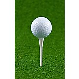 Players Gear 3-1/4 in No Resistance Golf Tees 30-Pack