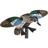 MOJO Outdoors Elite Series Blue Wing Teal Duck Decoy