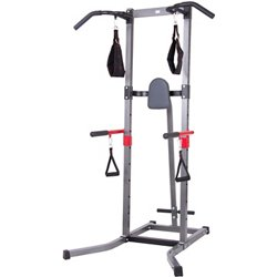 Total Body Deluxe Multifunctional Power Tower