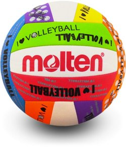 I Love Volleyball Mini Volleyball