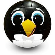 Mini Volleyballs