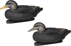 Flextone Life-Size Black Ducks 6-Pack