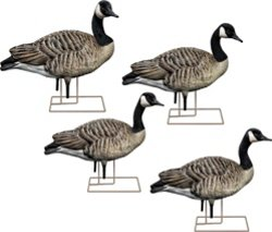 Avian-X AXF Honkers Sentry Decoys 6-Pack