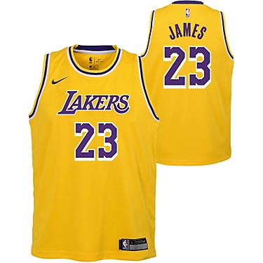 super popular c7ed8 43b8d NBA Boys' Los Angeles Lakers LeBron James 23 Icon Swingman Jersey