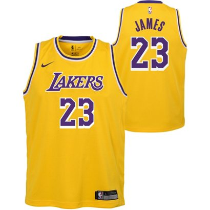 efd4e9ba4c5 NBA Boys  Los Angeles Lakers LeBron James 23 Icon Swingman Jersey ...