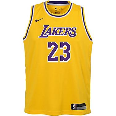 super popular d3046 7024d NBA Boys' Los Angeles Lakers LeBron James 23 Icon Swingman Jersey