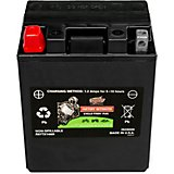 Interstate Batteries 210 Cold Cranking Amp AGM Battery