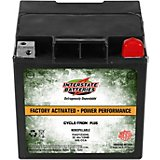Interstate Batteries 12 V Cycle-Tron Plus Power Performance Battery