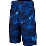 89ee7ac25d154 Boys  Dry Printed Training Shorts