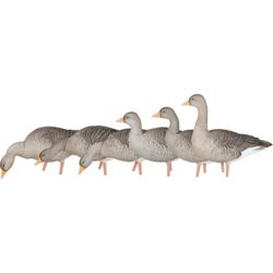 AXP Graylags Fusion Decoys 6-Pack