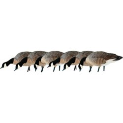 AXF Lessers Feeder Decoys 6-Pack
