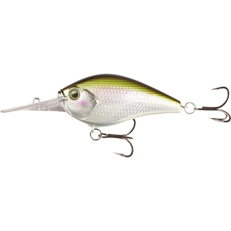13 Fishing Cliff Banger 2-1/2 in Crankbait Epic Shad, 1/2 Oz - Fresh Water Hard Baits at Academy Sports thumbnail