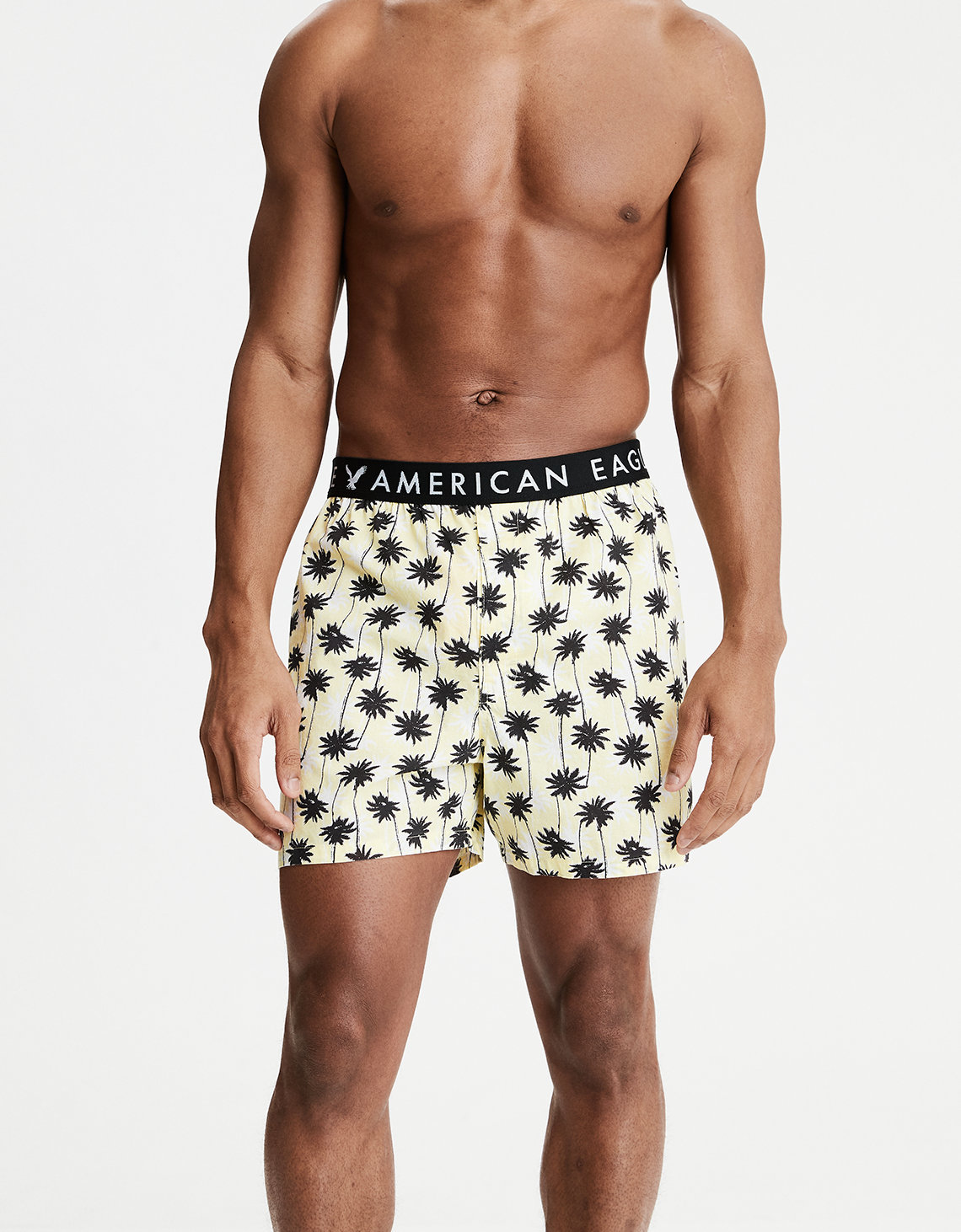 AEO Palm Tree Poplin Boxer