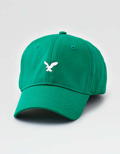 AE Fitted Baseball Hat