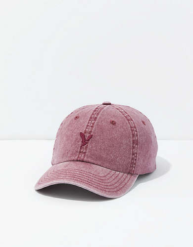 AEO Core Icon Hat