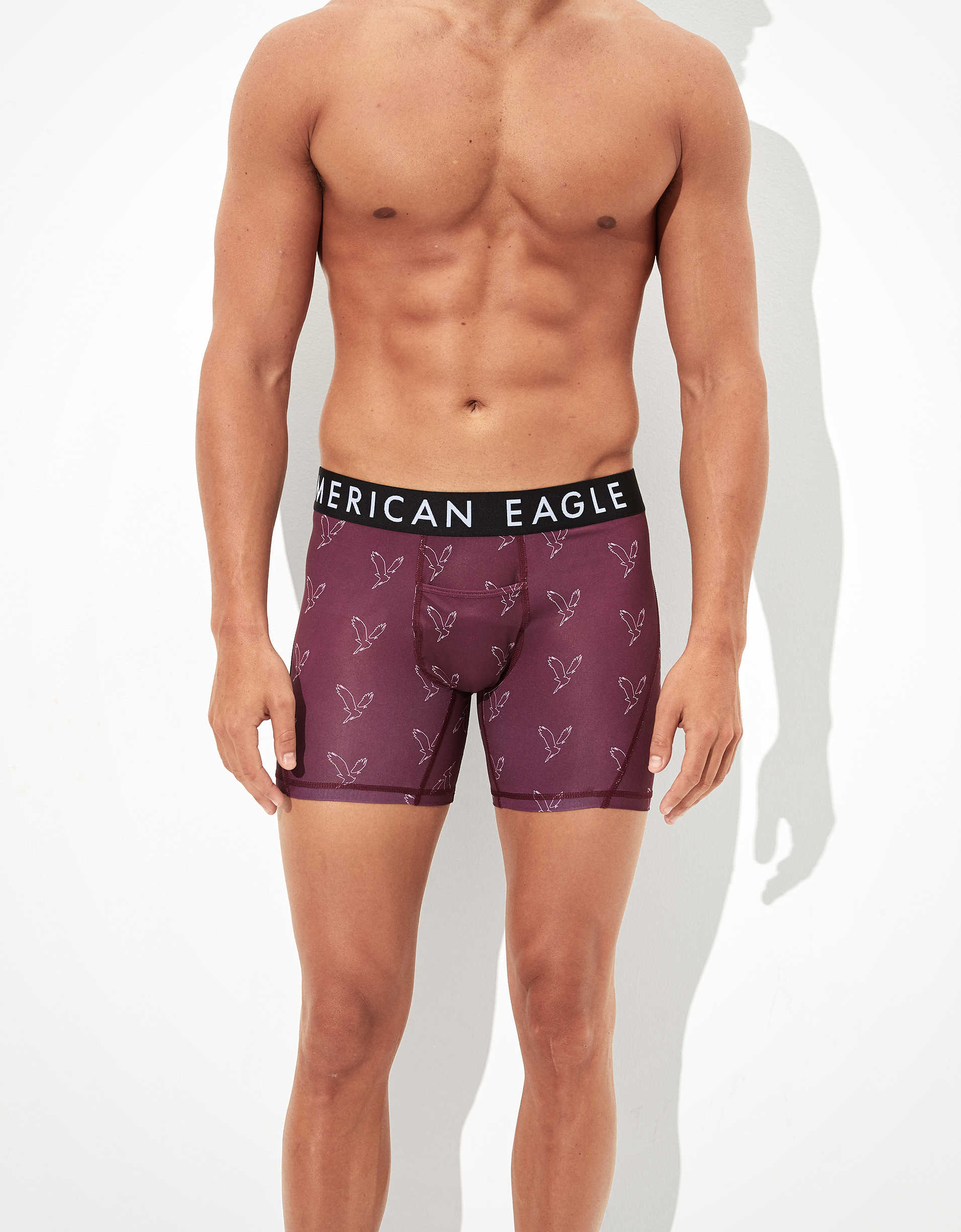 "AEO Eagle 6"" Horizontal Fly Flex Boxer Brief"