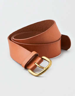 AEO Embroidered Belt