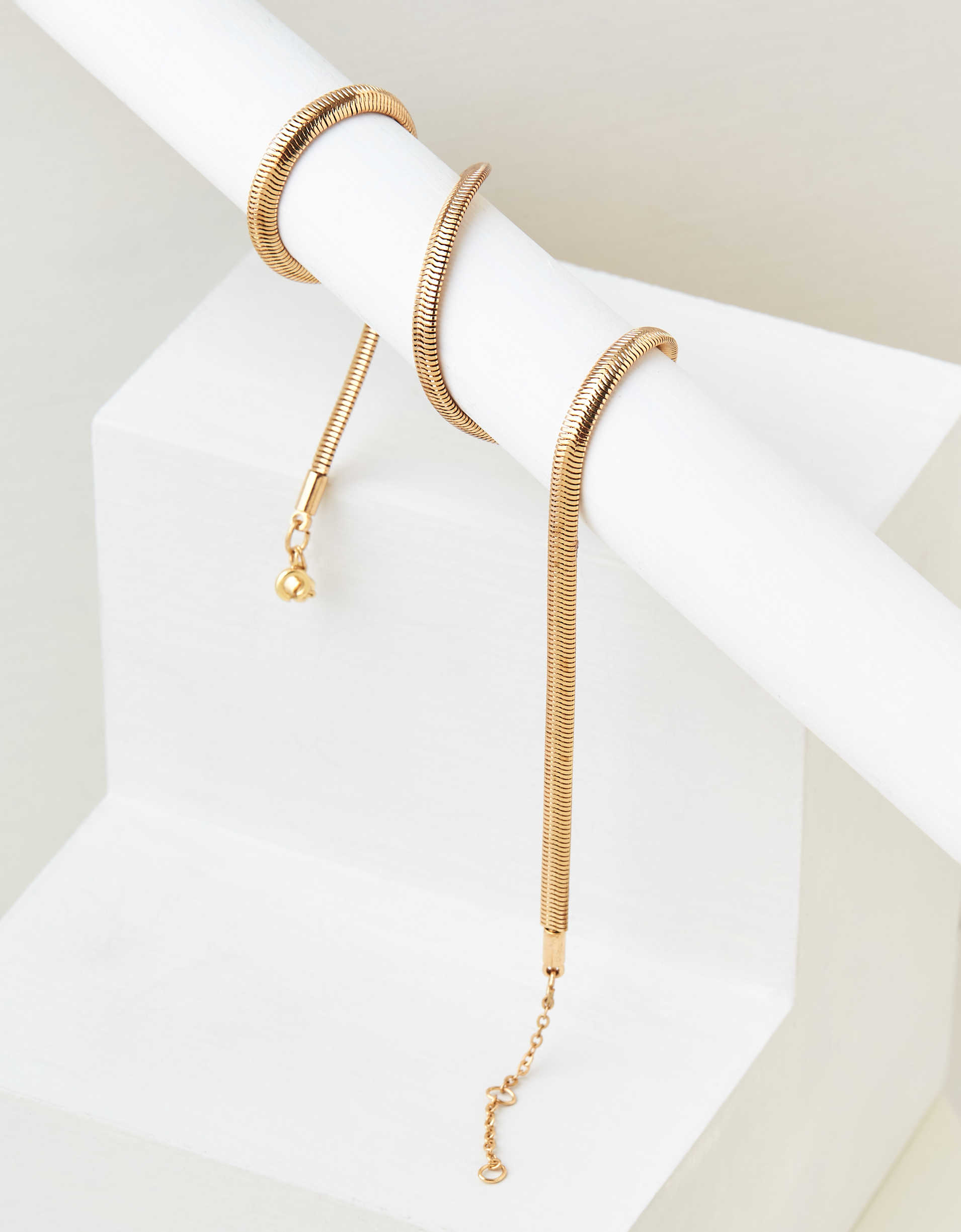 AEO Snake Chain Necklace