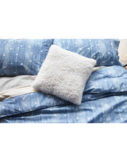 AEO APT Plush Pillow