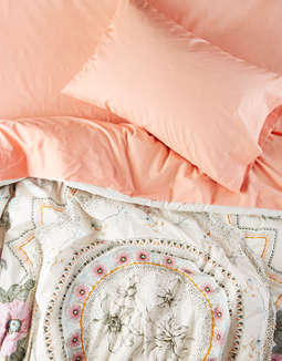 AEO APT Twin XL Scotty Floral Comforter Set