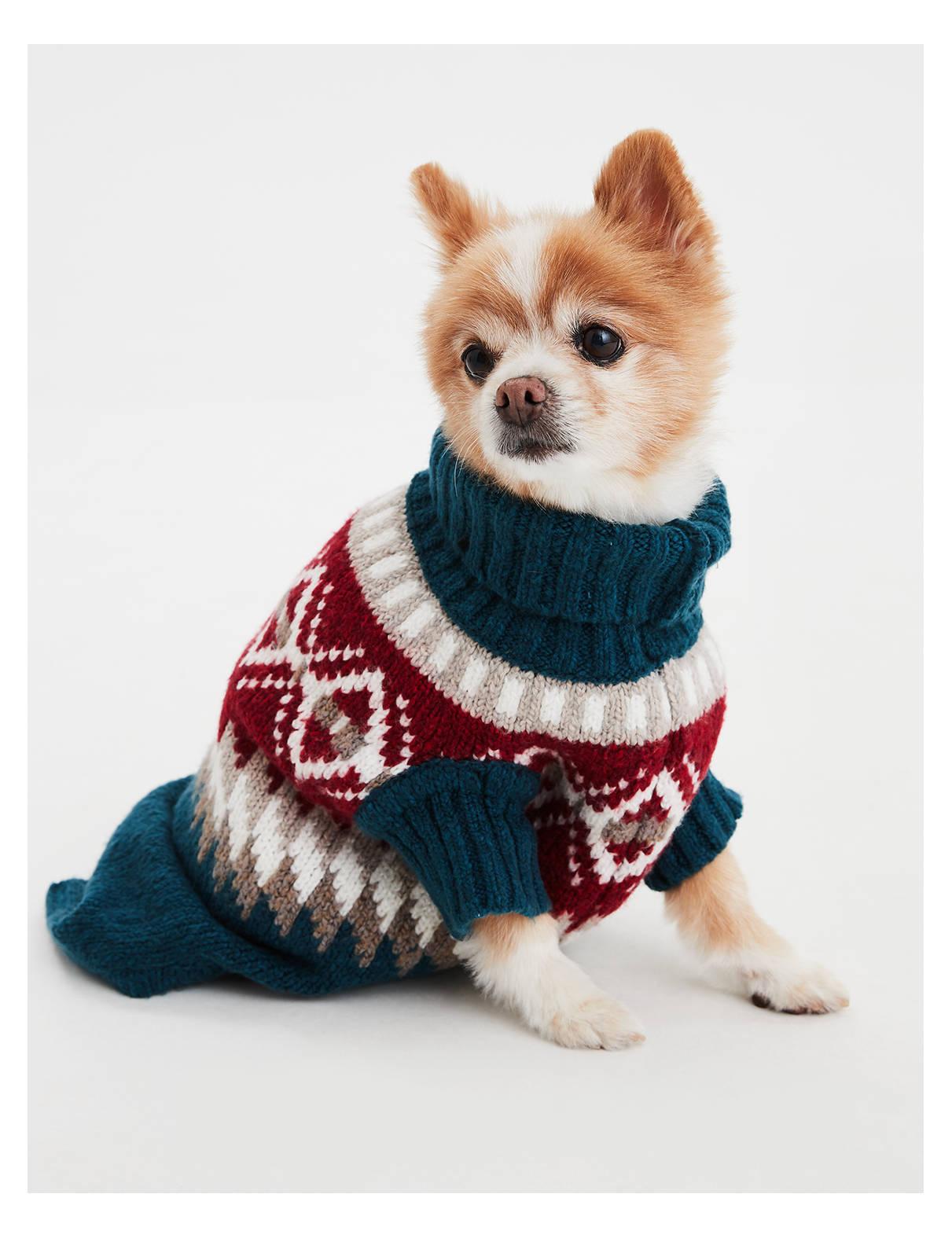 【アメリカンイーグル公式】American Beagle Outfittersドッグセーター ブルー