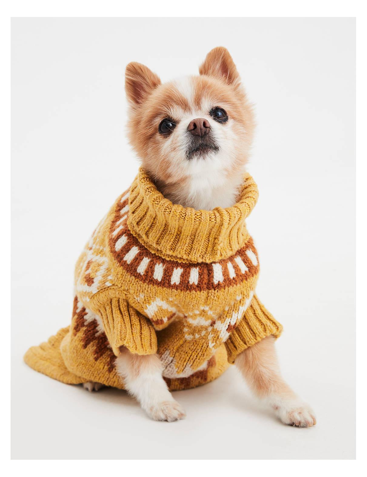 【アメリカンイーグル公式】American Beagle Outfittersドッグセーター イエロー