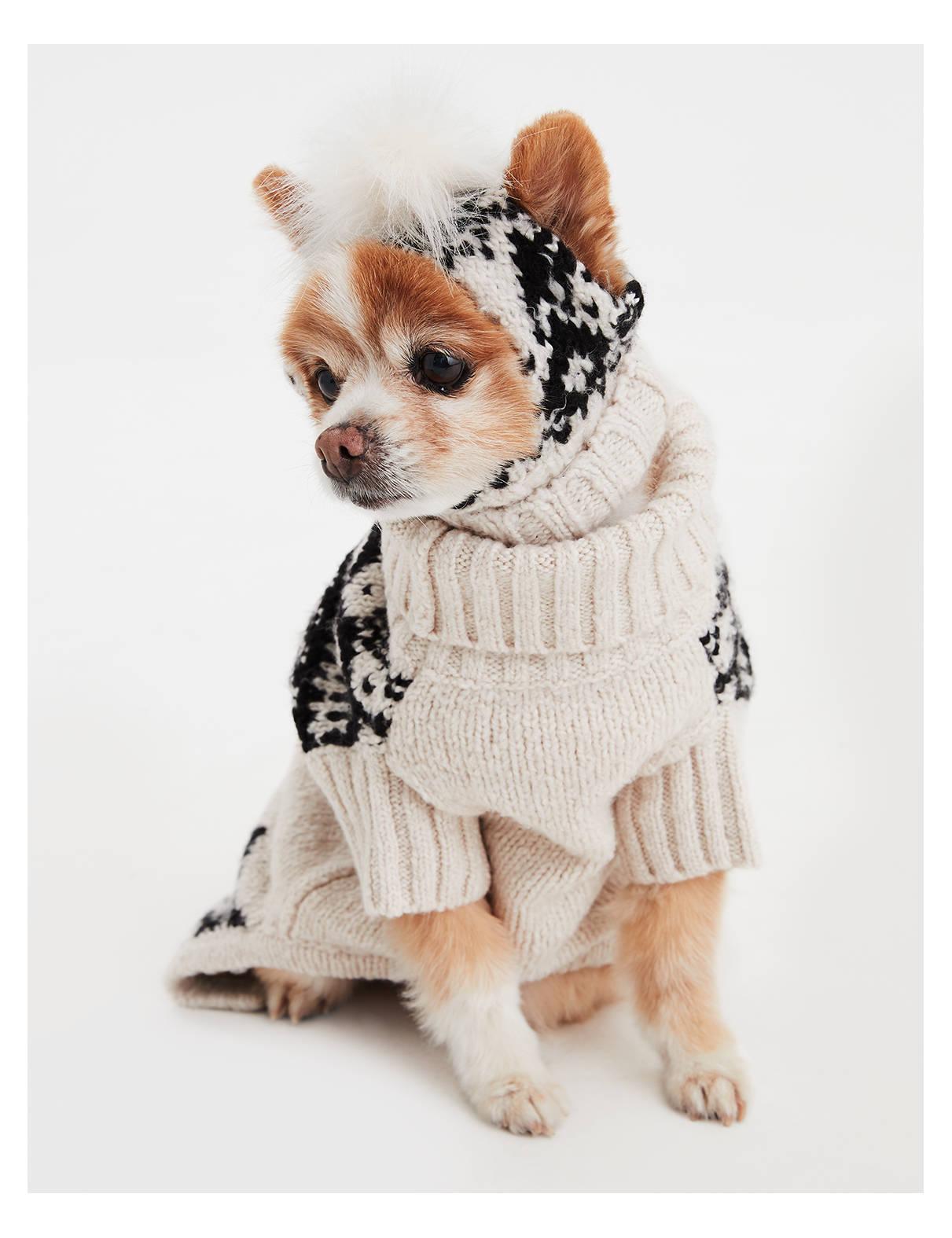 【アメリカンイーグル公式】American Beagle Outfittersドッグセーター トゥルーブラック
