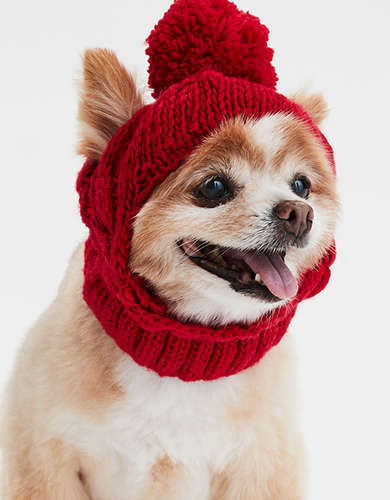 ABO Cable Dog Beanie