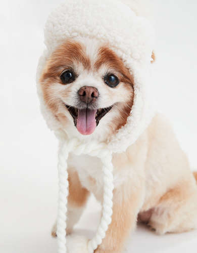 ABO Fuzzy Sherpa Dog Trapper Hat