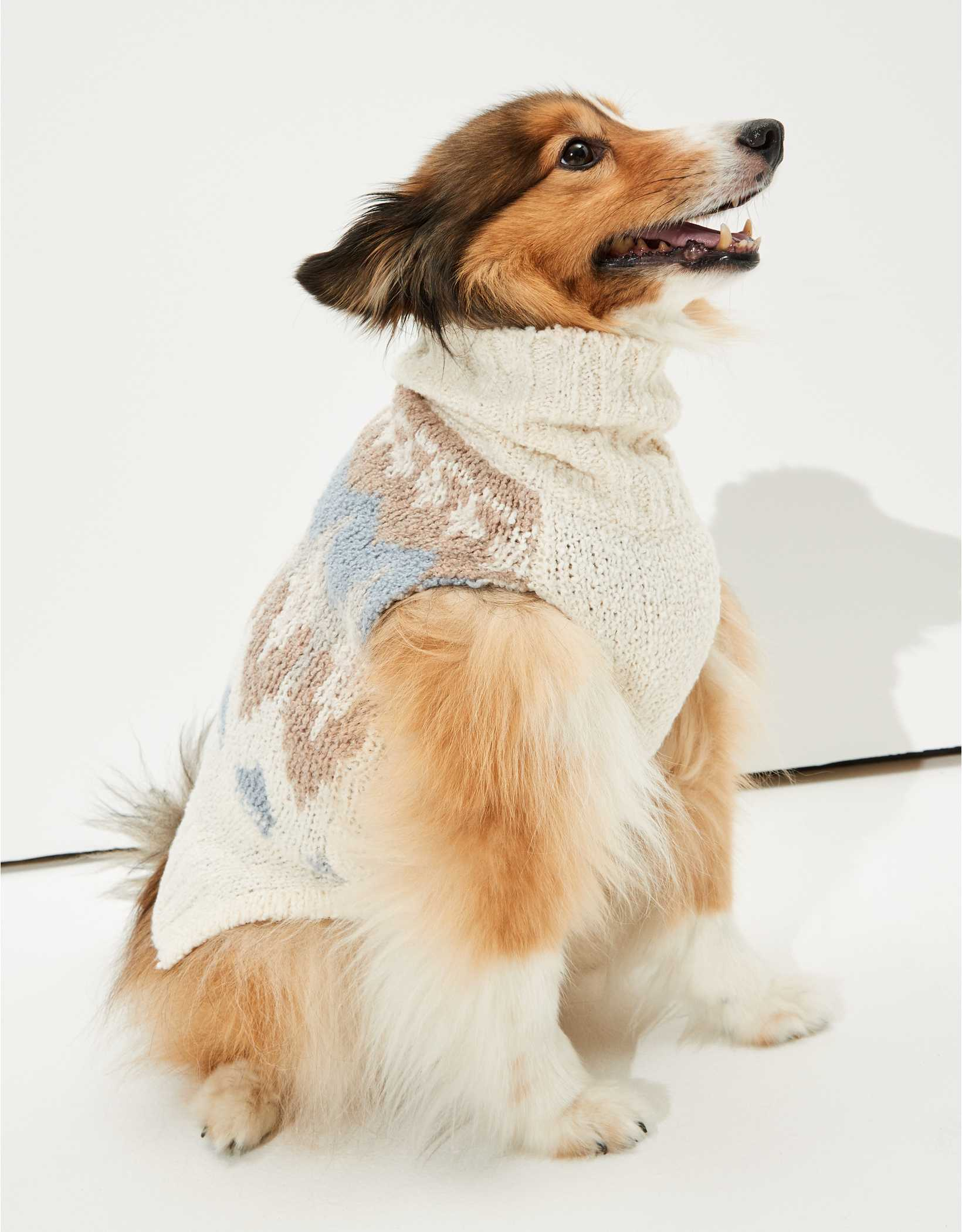 ABO Fairisle Doggy Sweater