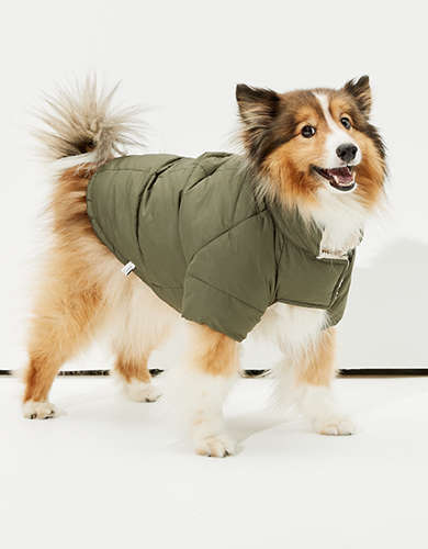 ABO Reversible Doggy Puffer Jacket