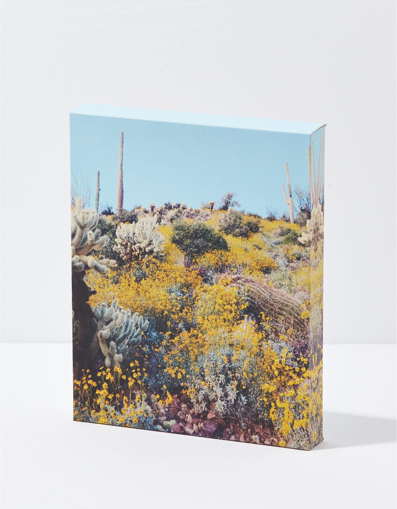 Happy Space Cactus Canvas