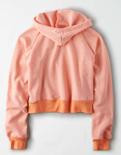AE Studio Cropped Pullover Hoodie