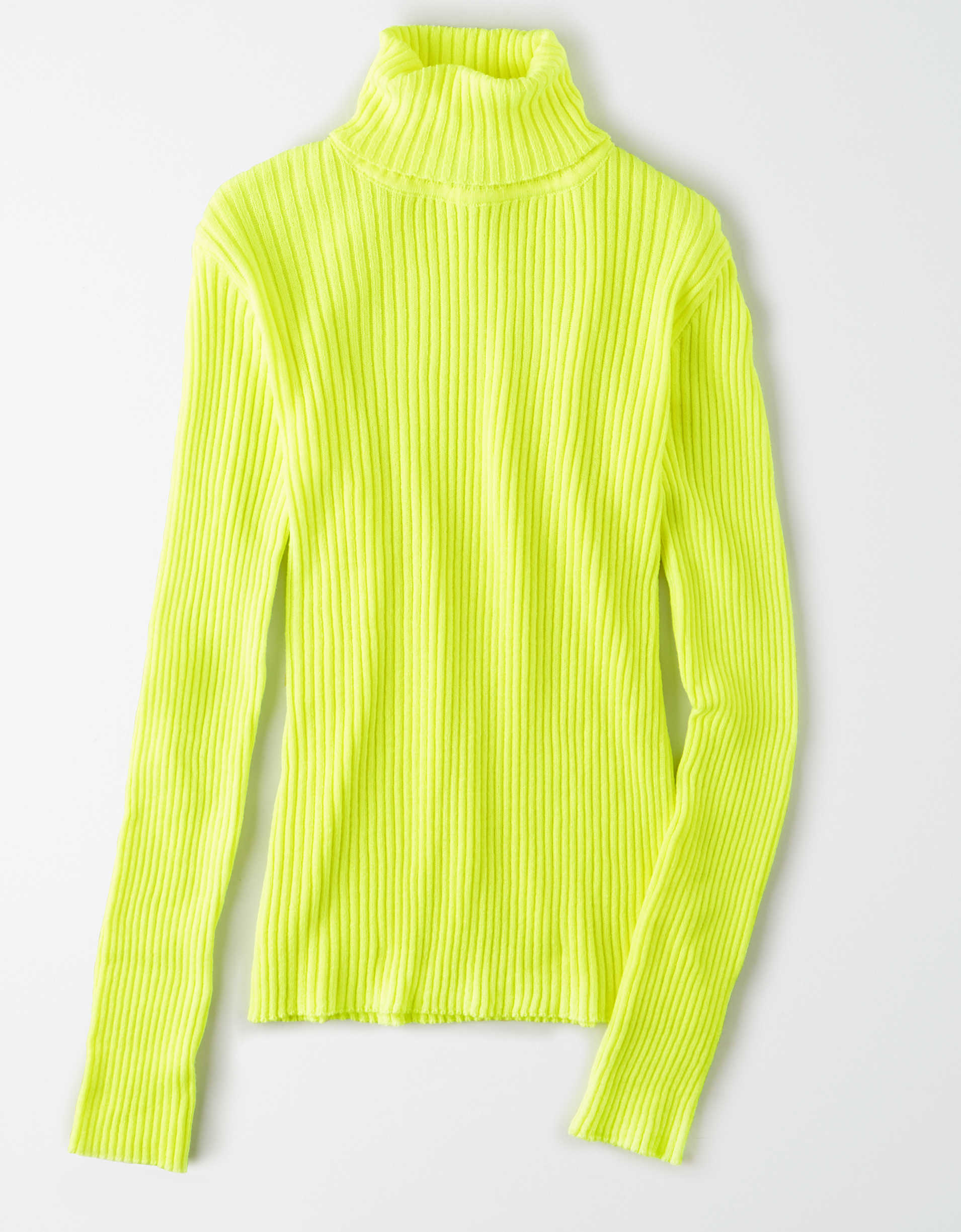 AE Studio Turtleneck Sweater