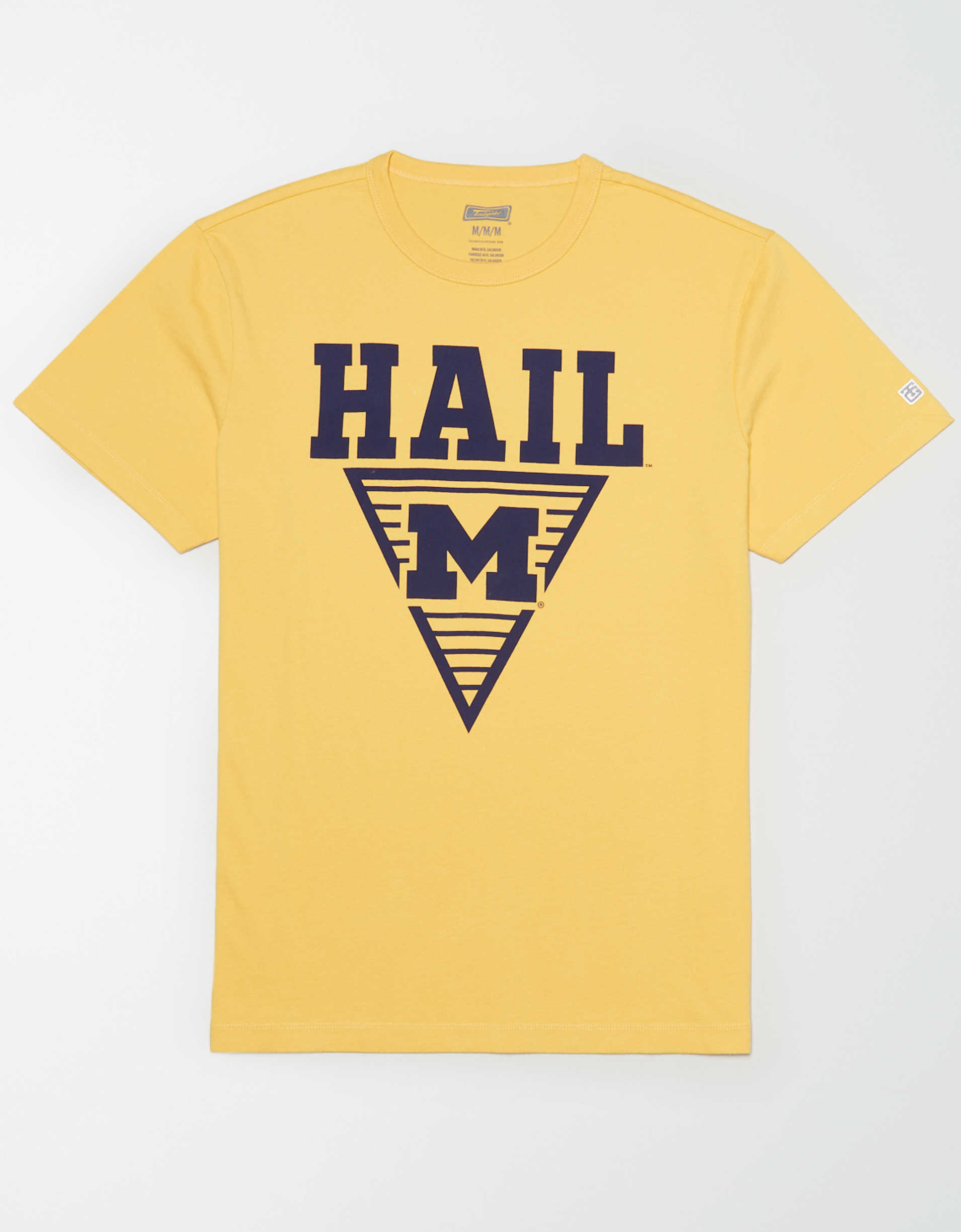 Tailgate Men's Hail Michigan T-Shirt