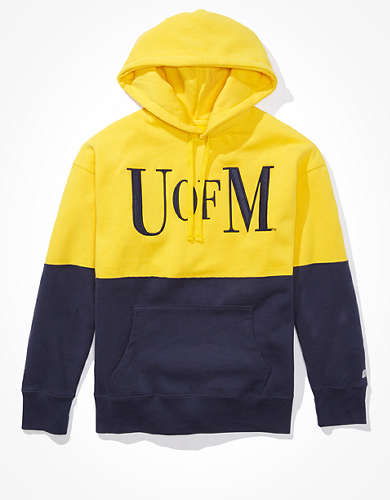 Tailgate Men's Michigan Wolverines Colorblock Hoodie