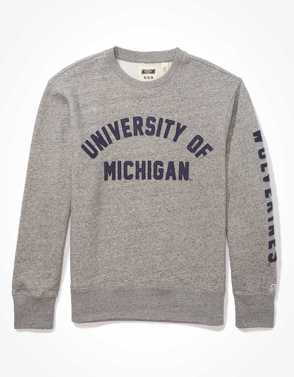 Tailgate Men's Michigan Wolverines Fleece Sweatshirt