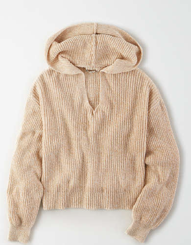 AE Slouchy Hooded Sweater