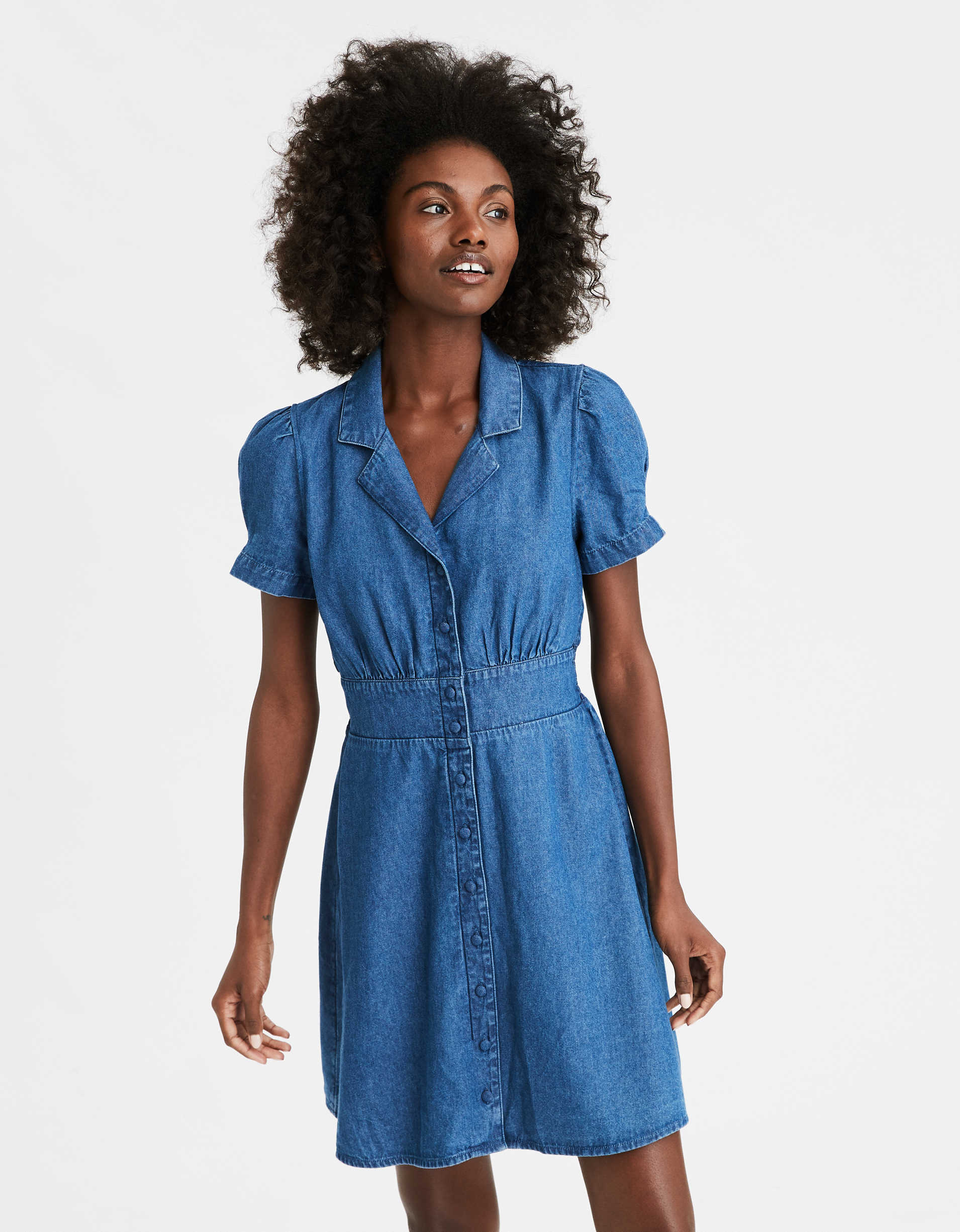 AE Denim Button Front Dress